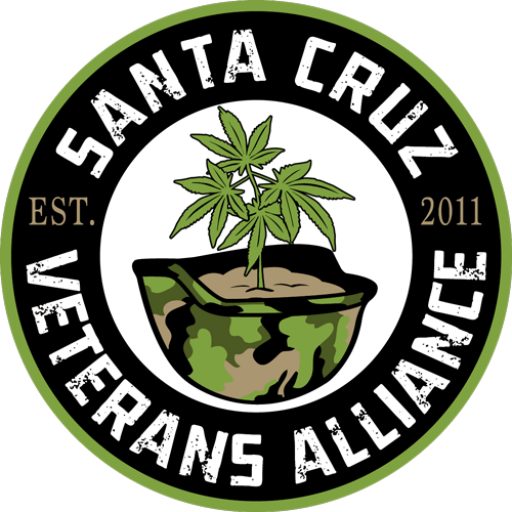 Sc Veterans Alliance Inc.
