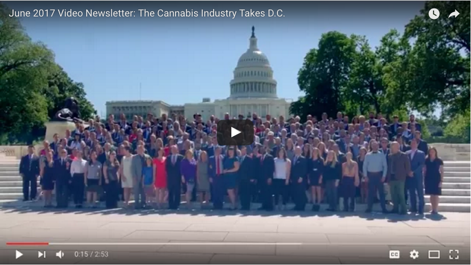 Video: The Cannabis Industry Speaks Out in D.C.