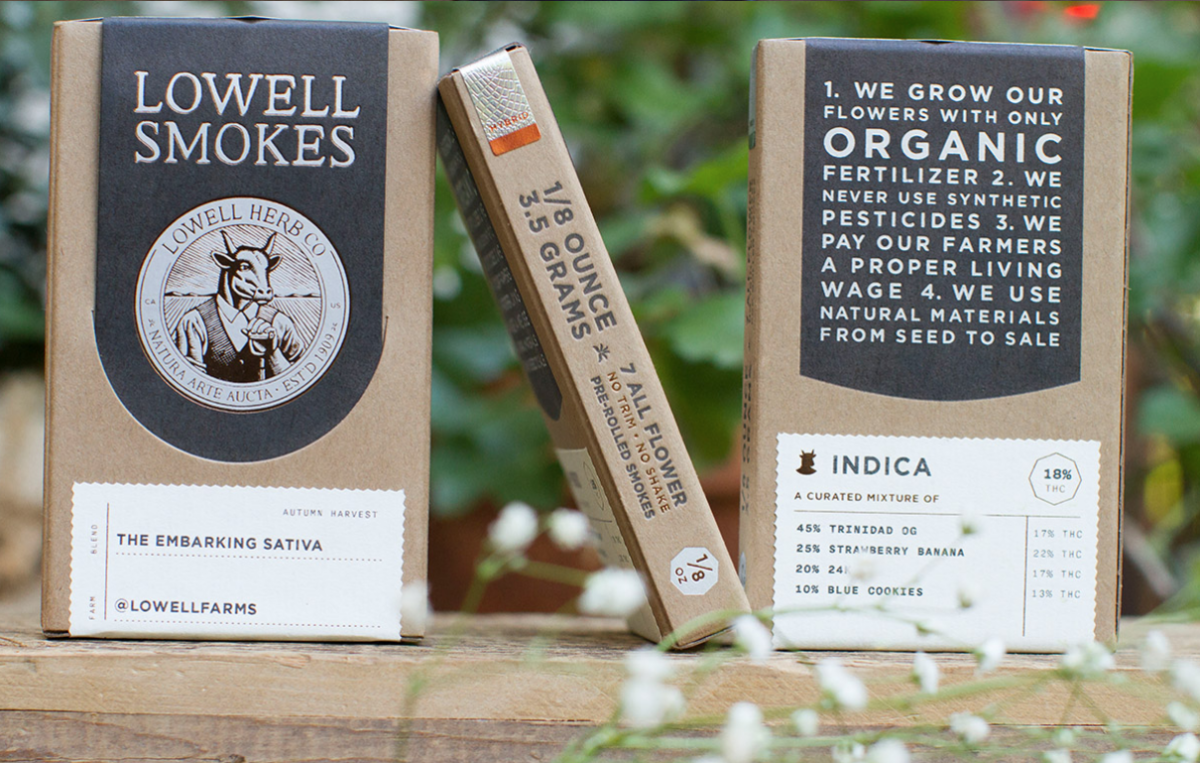Committee Blog: Progression in Packaging – Challenges & Opportunities for Cannabis Brands