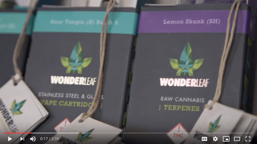 Video: Member Spotlight – WonderLeaf