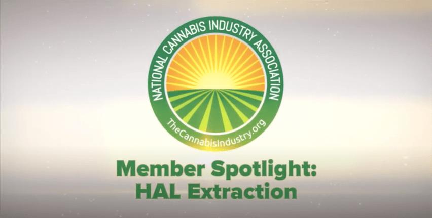 Video: Member Spotlight – HAL Extraction