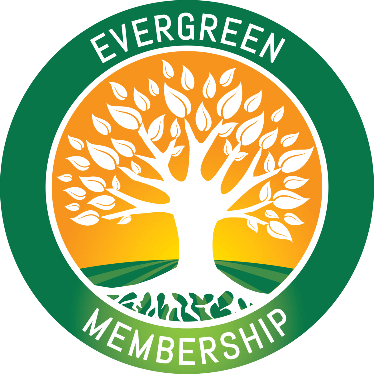 NCIA Announces New Evergreen Membership Tier for Policy-Oriented Business Leaders